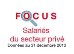 Couverture Focus : Salariés 2013