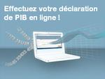 Téléservice PIB FR