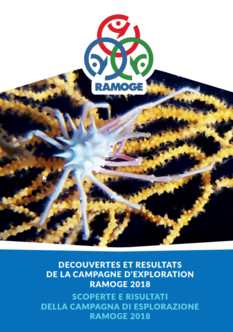 RAMOGE dévoile les résultats de sa campagne d'exploration 2018