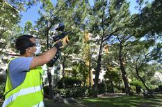 Lutte Biologique des pins et des palmiers : opérations de traitements préventifs à l'aide de lanceurs